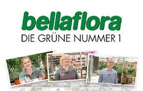 bellaflora DIE GRÜNE NUMMER 1