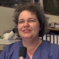 Katrin Schierle