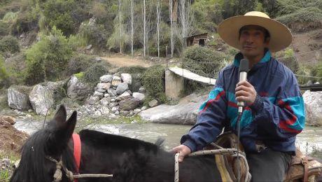 Manuel Gana Ortiz